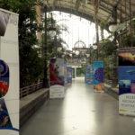 Exposición Atocha